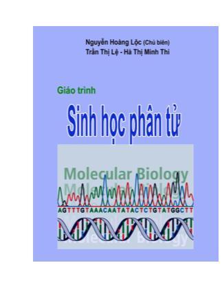 Giáo trình môn Sinh học phân tử